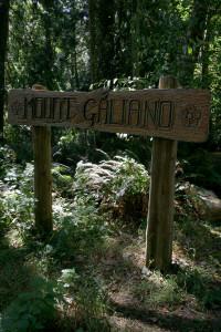 mount galiano trailhead cal wai