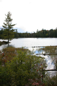 algonquin park grant lake cal wai